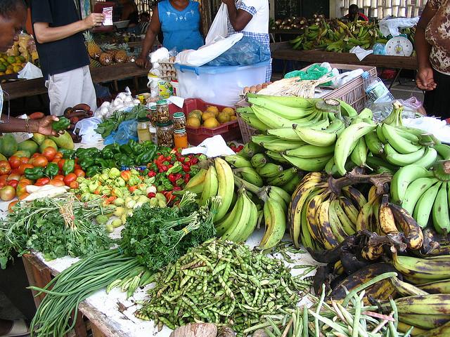 5 Reasons To Travel To Guyana