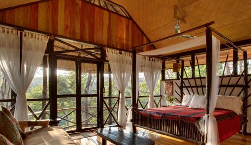 Room at Table Rock Jungle Lodge