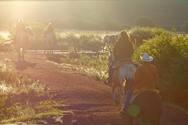 Wrangling horses on a guest ranch