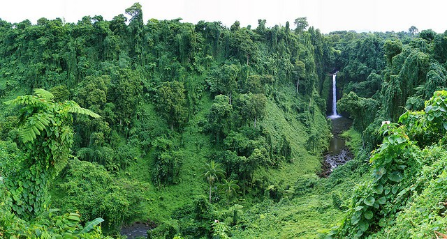Sopo'aga Falls in Samoa. This is the typical and common topography of the country ©NeilsPhotography/flickr