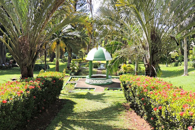 The Botanical Garden of Kingstown, famous for its wide variety of plants and trees ©Harry and Rowena Kennedy/flickr
