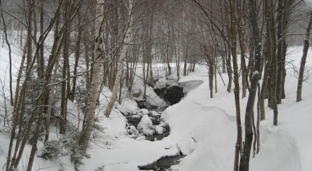 Snowy brook in Stowe, Vermont