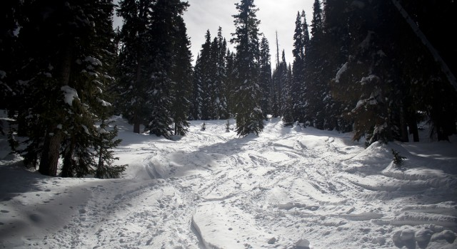 Ski trail in Wolf Creek Ski Area