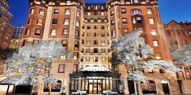 Cyber Monday  Lotte Palace New York City