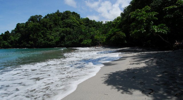 The beach at Tulemar Resort - Buena Vista Luxury Villas
