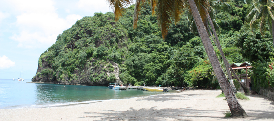 3 Star The Hummingbird Beach Resort In St Lucia For 141